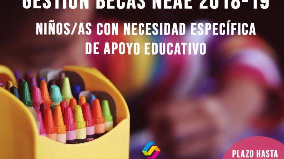 Becas para niños/as con Necesidad Específica de Apoyo Educativo (NEAE)