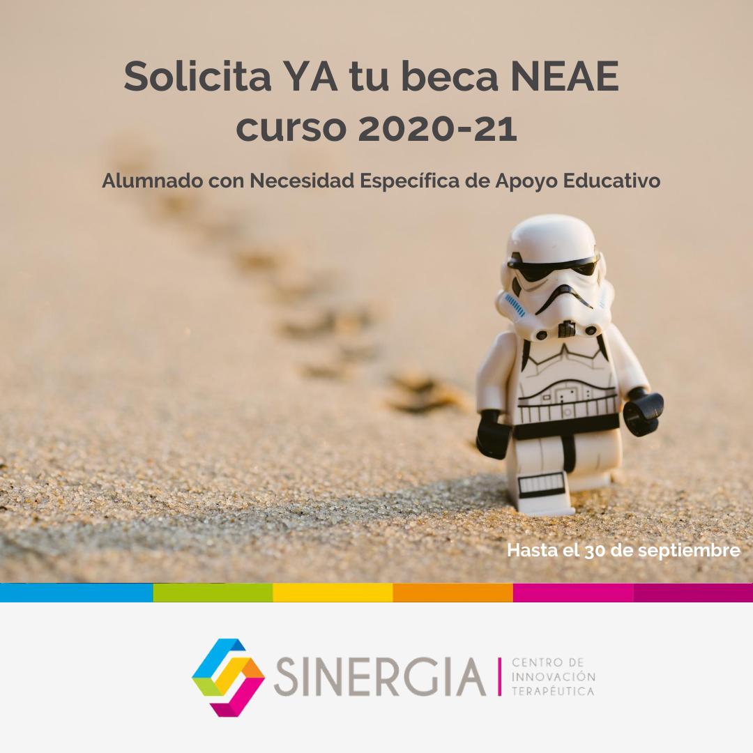 beca NEAE 2020-21